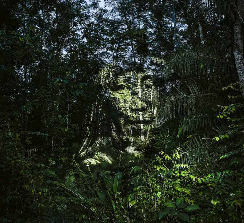 Street Art 2.0 in the Amazon; digital projection on trees of Suri natives by Philippe Echaroux